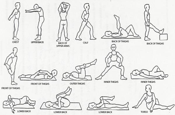 نکته ورزشی